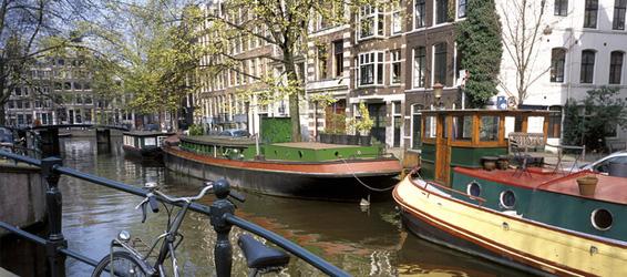 linguae-holandes